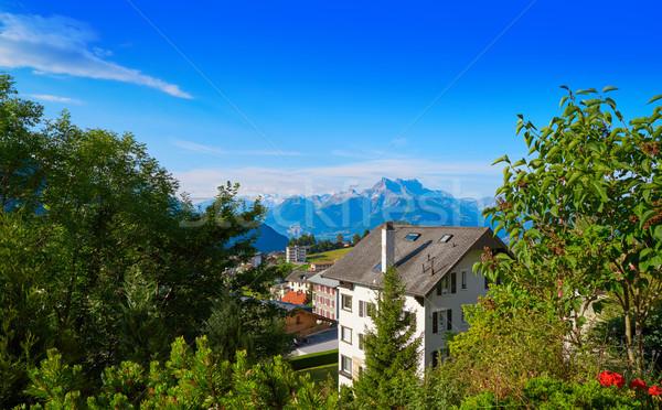Alpler İsviçre bahar çim orman manzara Stok fotoğraf © lunamarina