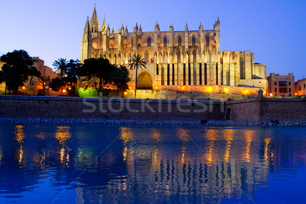 Cathedral of Palma de Mallorca La Seu night view Stock photo © lunamarina