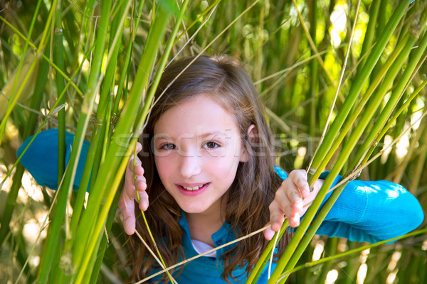 girl playing in nature  peeping from green canes Stock photo © lunamarina