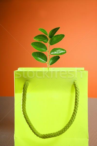 środowiska ochrona torbę na zakupy roślin zakupy Zdjęcia stock © lunamarina