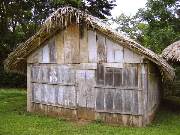 Jungle wooden house in Chiapas Mexico Stock photo © lunamarina