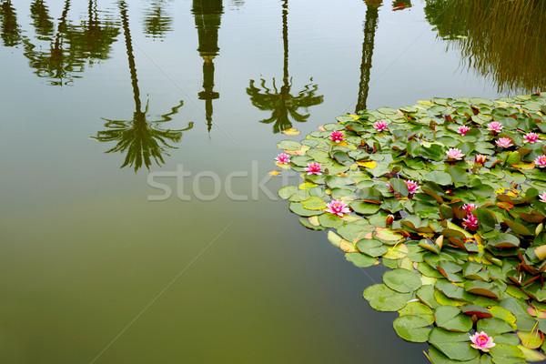 公園 庭園 スペイン アンダルシア 水 建物 ストックフォト © lunamarina