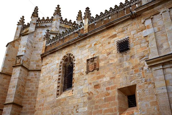 大聖堂 スペイン ラ 市 アーキテクチャ 休暇 ストックフォト © lunamarina