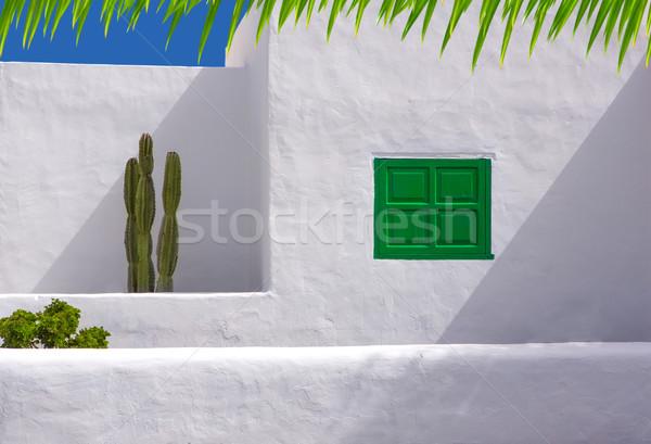 Lanzarote san Bartolome white typical cactus house Stock photo © lunamarina