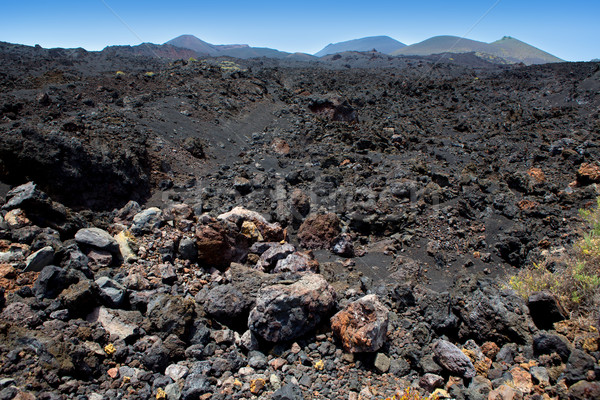 La Palma volcanic lava black stones Stock photo © lunamarina