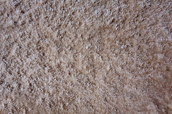 Badwater Basin Death Valley salt textures macro Stock photo © lunamarina