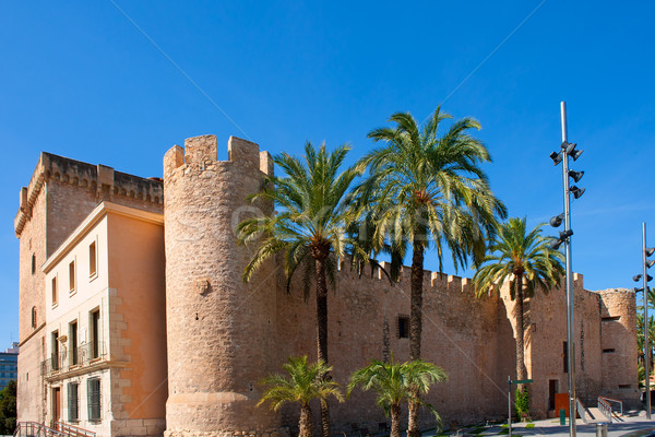 Elche Elx Alicante Altamira Palace near el Palmeral Stock photo © lunamarina