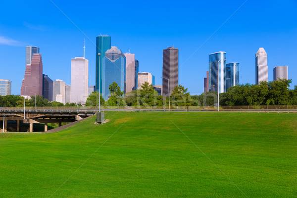 Houston linha do horizonte blue sky parque Texas Foto stock © lunamarina