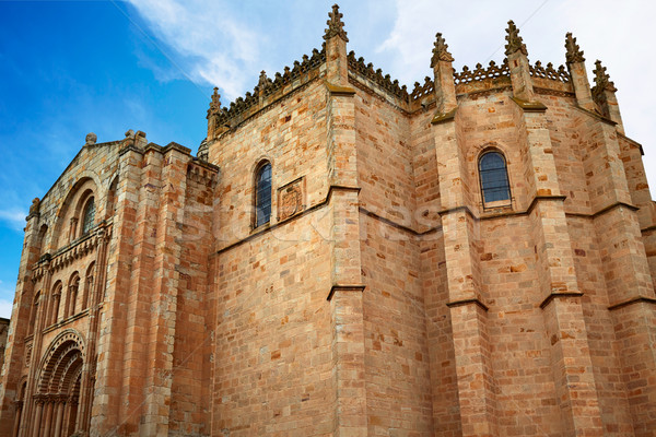 Zamora San Salvador cathedral in Spain Stock photo © lunamarina
