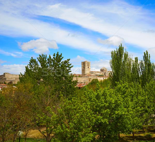 Zamora spring field skyline Spain Stock photo © lunamarina