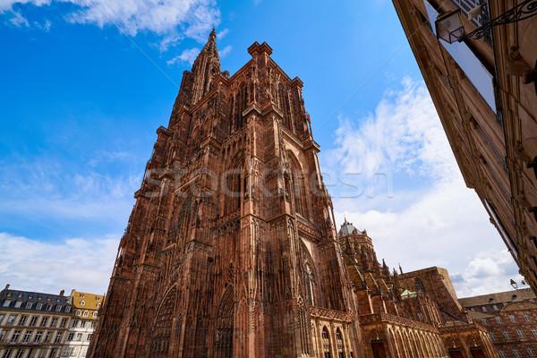 ノートルダム大聖堂 フランス 建物 市 世界 青 ストックフォト © lunamarina