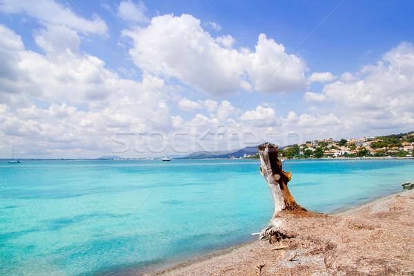 Strand majorca eiland Spanje landschap zee Stockfoto © lunamarina