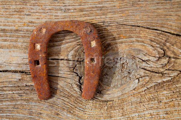 Antiguos herradura suerte símbolo oxidado vintage Foto stock © lunamarina