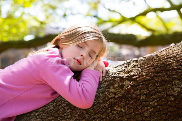 Blond dzieci dziecko dziewczyna drzemka drzewo Zdjęcia stock © lunamarina
