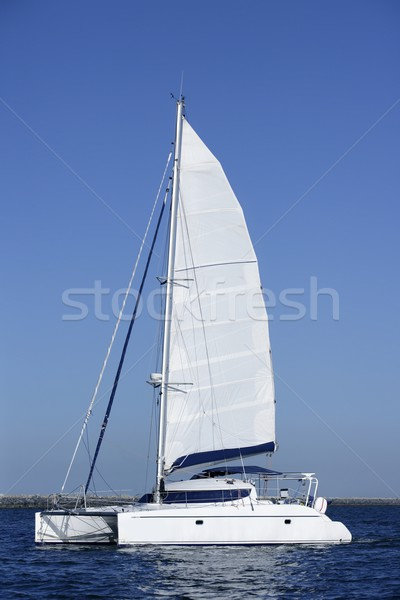 Catamaran sailboat sailing blue ocean water Stock photo © lunamarina