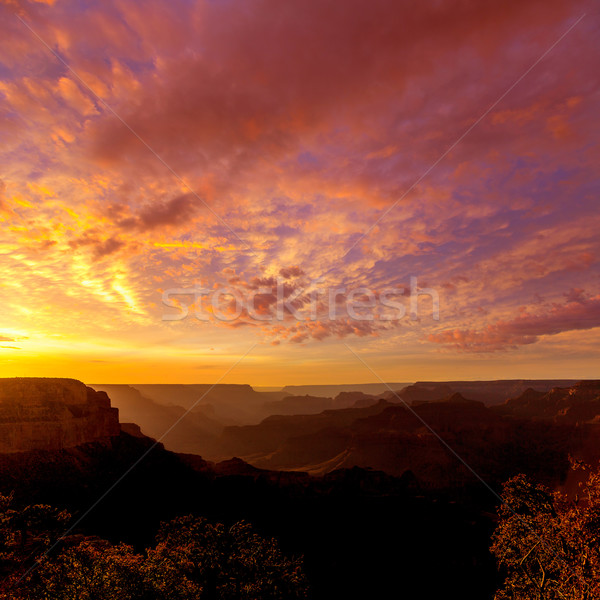 Arizona sunset Grand Canyon National Park Yavapai Point Stock photo © lunamarina