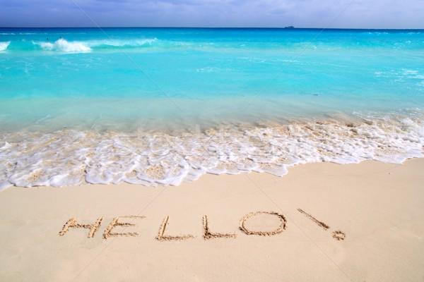 привет сообщение заклинание написанный тропический пляж песок Сток-фото © lunamarina