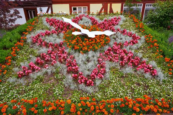 Fleur horloge Allemagne jardin fleurs ville Photo stock © lunamarina