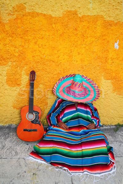 Mexican typowy leniwy człowiek sombrero hat Zdjęcia stock © lunamarina