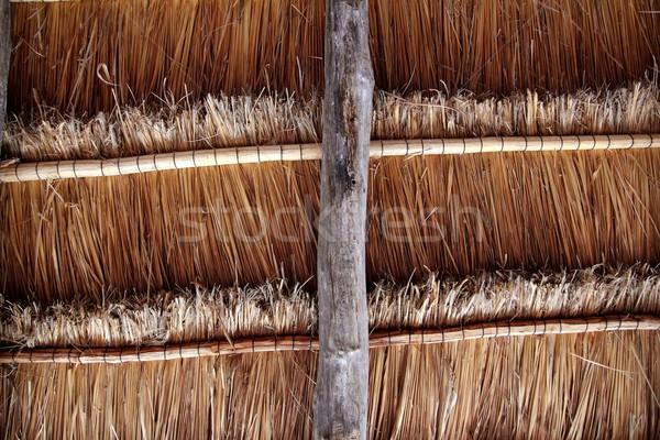 Stok fotoğraf: Kulübe · geleneksel · güneş · çatı · üzerinde · kabin