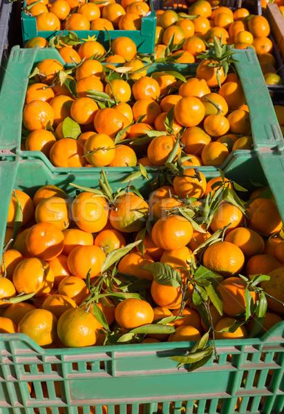 オレンジ タンジェリン 果物 収穫 バスケット ストックフォト © lunamarina