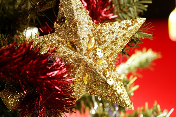 Christmas star decoration still on red background Stock photo © lunamarina