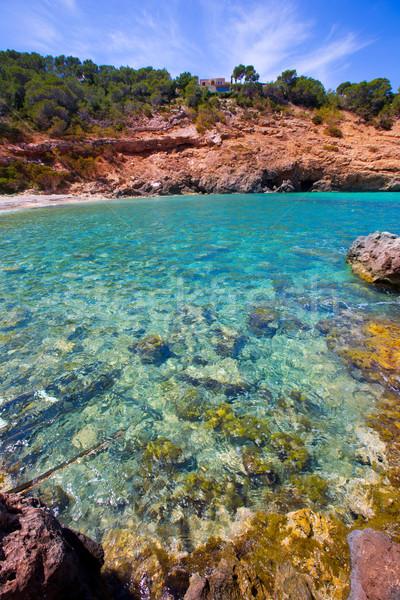 Ibiza Cala Moli beach with clear water in Balearics Stock photo © lunamarina