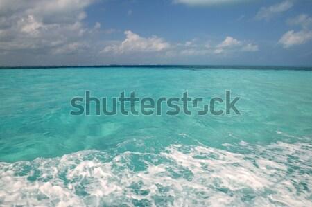 Caribbean tropical beach clear turquoise water Stock photo © lunamarina