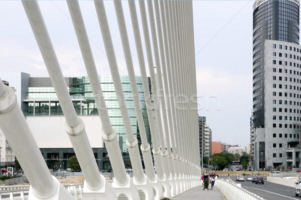 Városkép városi híd jelenet Valencia Európa Stock fotó © lunamarina