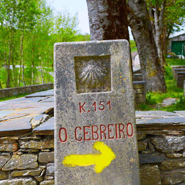 O Cebreiro by the way of Saint James in Galicia Stock photo © lunamarina