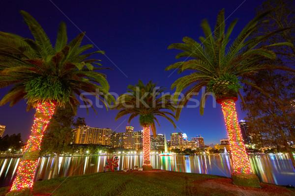Orlando sziluett naplemente tó Florida USA Stock fotó © lunamarina