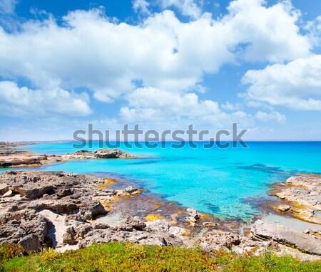 Cala Saona Formentera Ibiza view in background Stock photo © lunamarina
