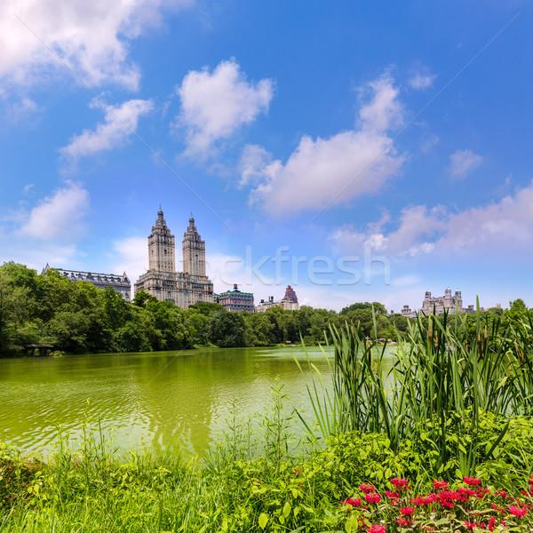 Central Park The Lake Manhattan New York Stock photo © lunamarina