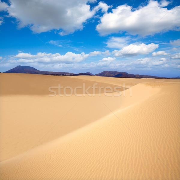 Stock photo: Corralejo dunes Fuerteventura island desert