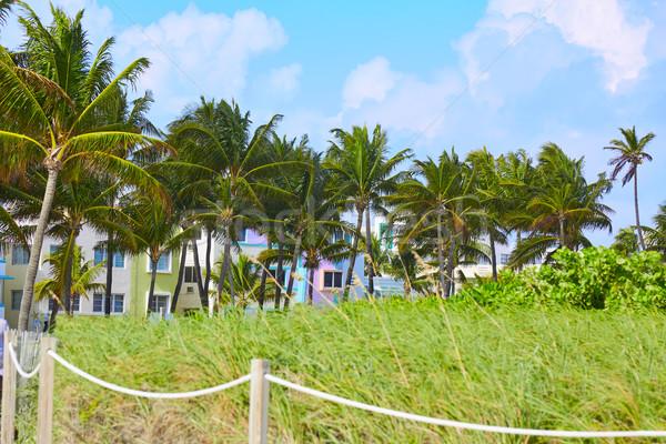 Miami plaj giriş palmiye ağaçları Florida ABD Stok fotoğraf © lunamarina