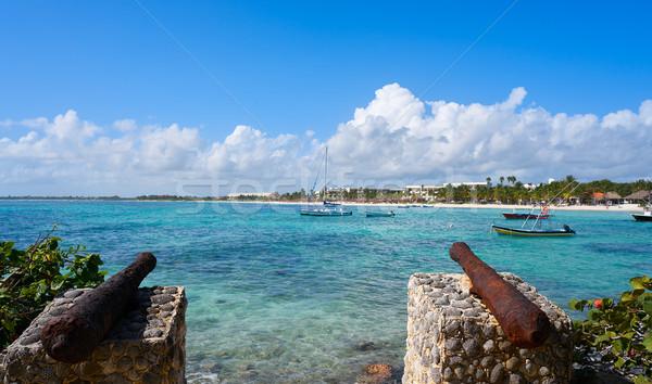 Akumal beach rusted canon in Riviera Maya Stock photo © lunamarina