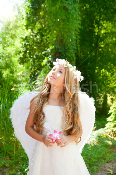 Angel children girl holding flower in hand looking sky Stock photo © lunamarina