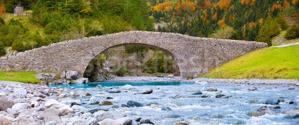 Stock photo: Rio Ara river and bridge San Nicolas de Bujaruelo in Ordesa