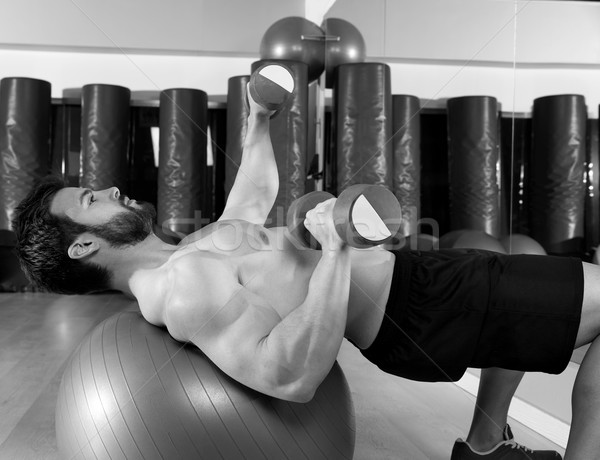 Dumbbell chest press on fit ball man workout Stock photo © lunamarina
