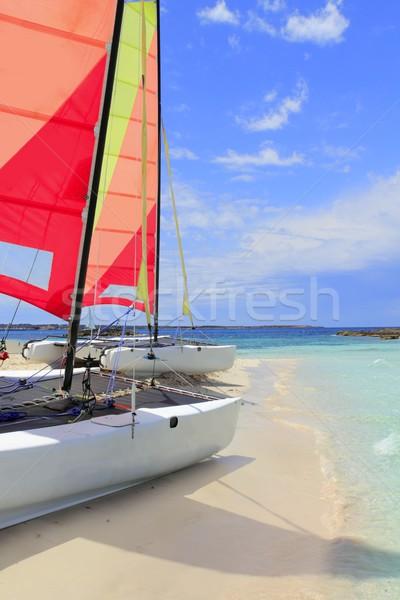 Gato catamarán playa cielo azul mar mundo Foto stock © lunamarina