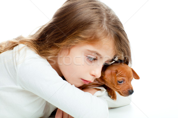 brunette kid girl with mini pinscher pet mascot dog Stock photo © lunamarina