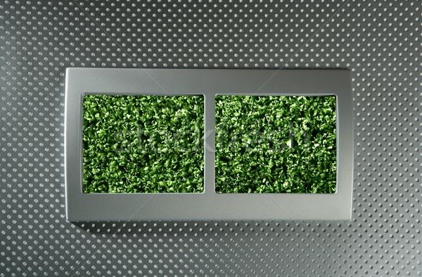 экологический возобновляемый электрических энергии метафора зеленый Сток-фото © lunamarina