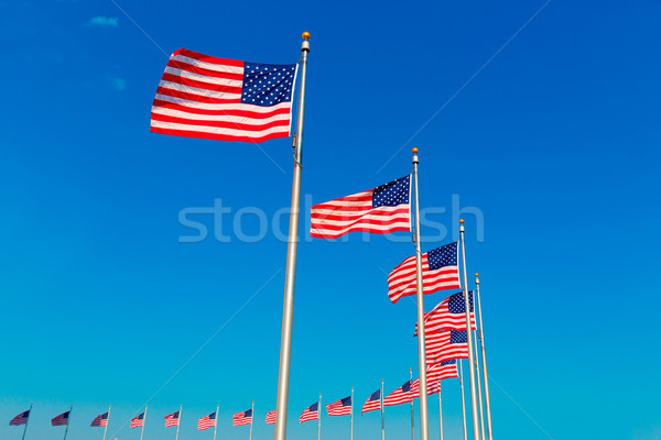 Washington Monument flags in District of Columbia Stock photo © lunamarina