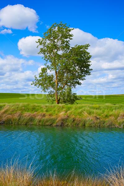 Canal canal maneira água azul Foto stock © lunamarina