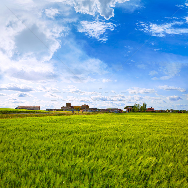 The Way of Saint James in Palencia cereal fields Stock photo © lunamarina