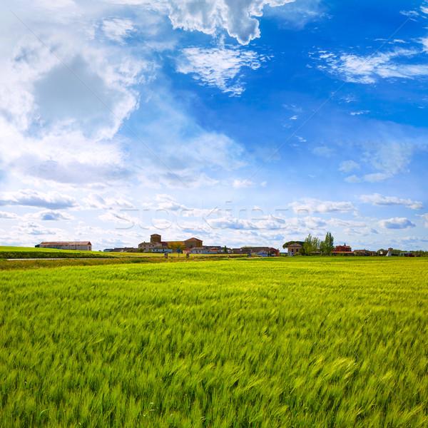 способом святой зерновых полях Испания пейзаж Сток-фото © lunamarina