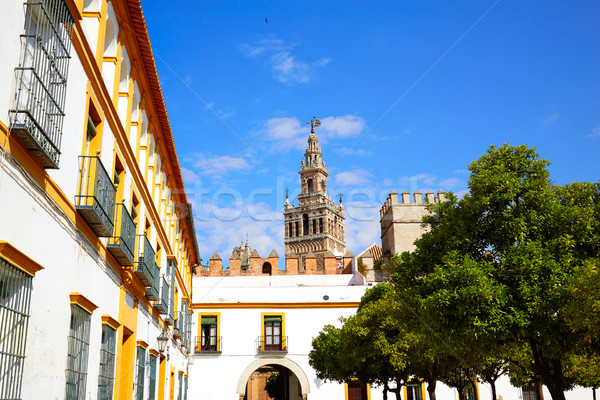 Seville Giralda tower of Sevilla Andalusia Spain Stock photo © lunamarina