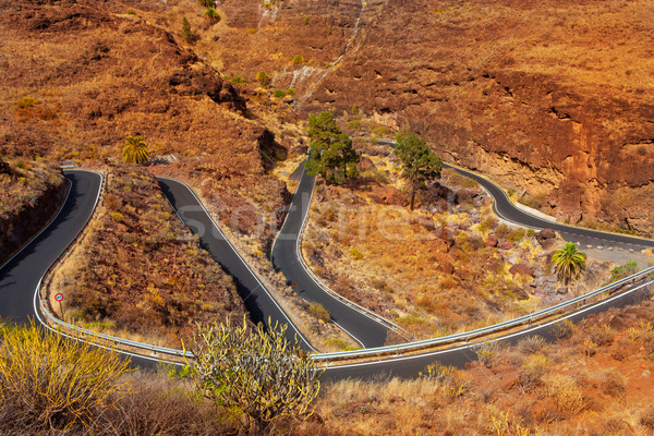 curves winding road high view in red mountains Stock photo © lunamarina