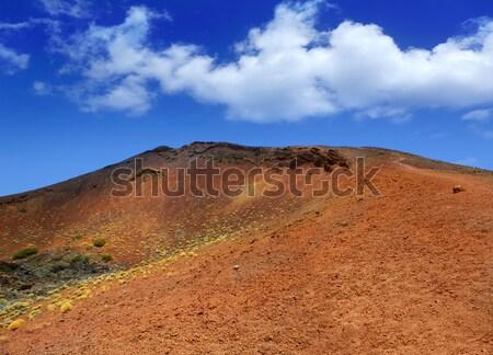 Tenerife park Montana hemel natuur Stockfoto © lunamarina