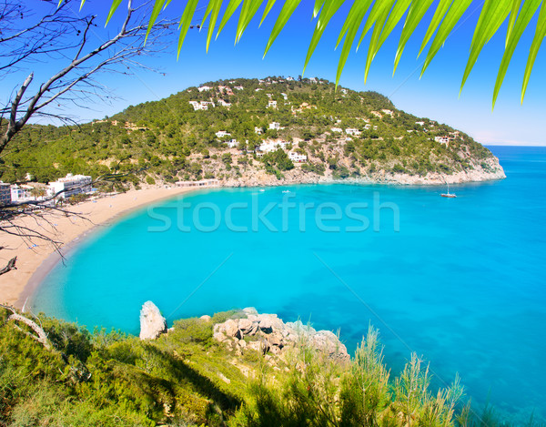 Aerial view of Caleta de Sant Vicent in Ibiza island Stock photo © lunamarina